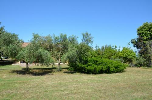 Agriturismo Bachile Bertula Sardegna (26)
