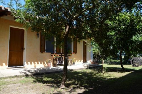 Agriturismo Bachile Bertula Sardegna (42)