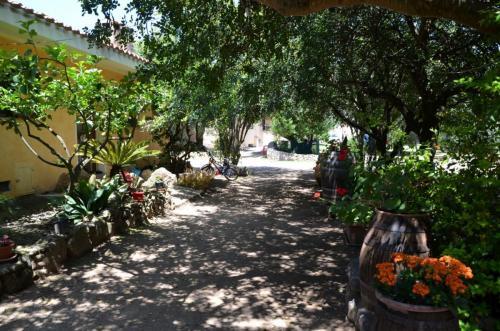 Agriturismo Bachile Bertula Sardegna (7)
